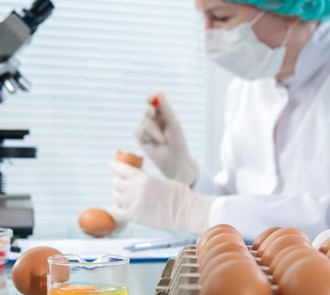 Cursa el Máster en Biotecnología Alimentaria + Máster en Dietética