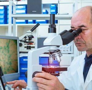Estudiar el Máster en Epidemiología y Salud Pública + Máster en Dietética te permitirá especializarte en esta rama de la salud